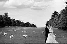 Musik und Tanzen an der Hochzeit - erfahren Sie mehr