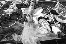 Die Jungfrau und die traditionellen Hochzeitsbräuche